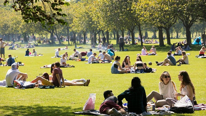 Cantonese Picnic in the Meadows (Free Lunch) image