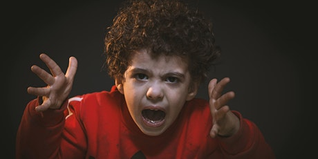 Your Child's Emotional Meltdowns - How NOT to Lose Control tickets