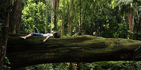 Why do Trees Make us Happy? The science of trees and human health - Online biglietti