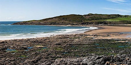 Beach and rock pooling adventure day tickets