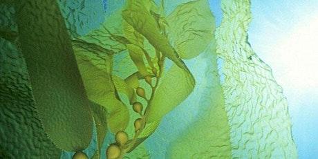 Science Literacy Week: Help From Kelp! tickets