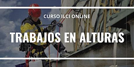 """CURSO ONLINE  """"TRABAJOS EN ALTURAS"""" entradas"""