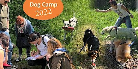 Dogcamp in Rauris 30.7. - 6.8.22 Tickets