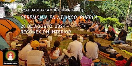 Atlixco, Puebla con Ayahuasca/Kambó/Bufo/Cacao boletos