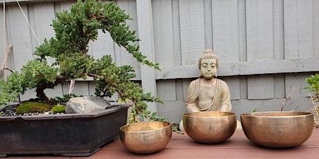 FREE Online Webinar on Sound Healing and Sound Immersion Meditation tickets