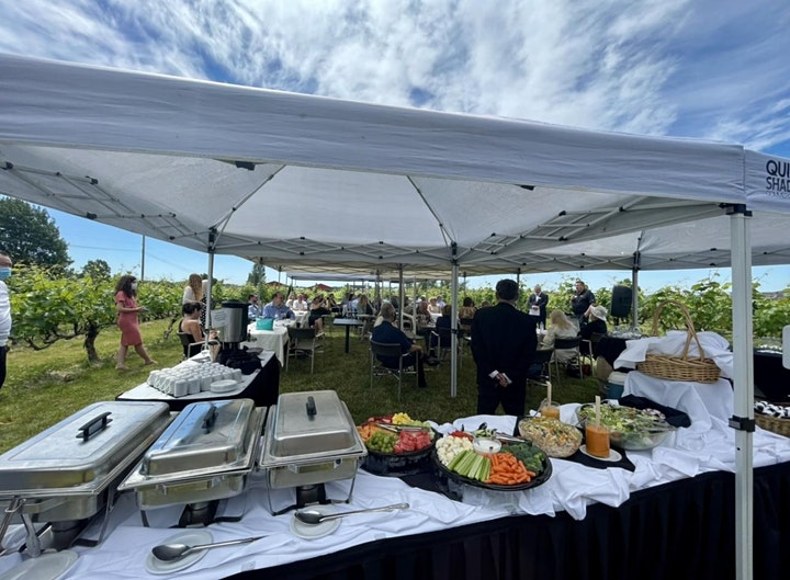 Vineyard Lunch with wine & Rock n' Roll live music image