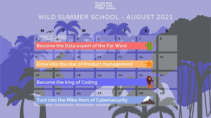 Wild Summer School - Introduction to HTML/CSS image