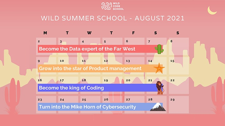 Wild Summer School - Interactive Dashboarding with Data Studio image