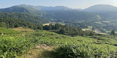 Cumbria Wildlife Trust, Wanderlust Women and Mosaic Outdoors tickets