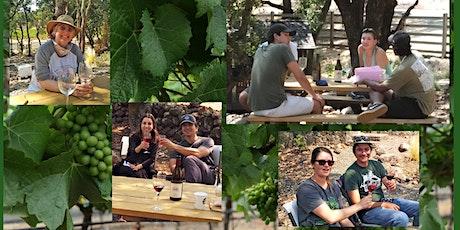 Outdoor tasting at Zeka Vineyards in Bennett Valley Sonoma - Sat 8/21 tickets