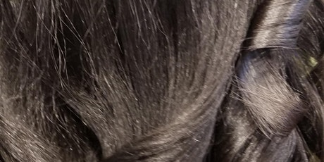 Natural, Textured Hair Silk Out For Professionals 4 CE Hours (Illinois) tickets
