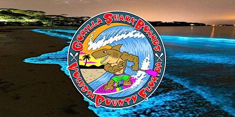Bioluminescence Paddleboard & Kayak Tour tickets