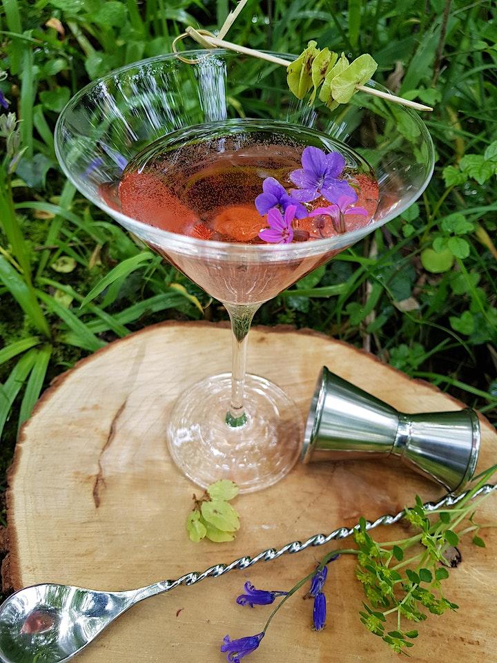 Gardening Lady Hedgerow Gin Workshop image