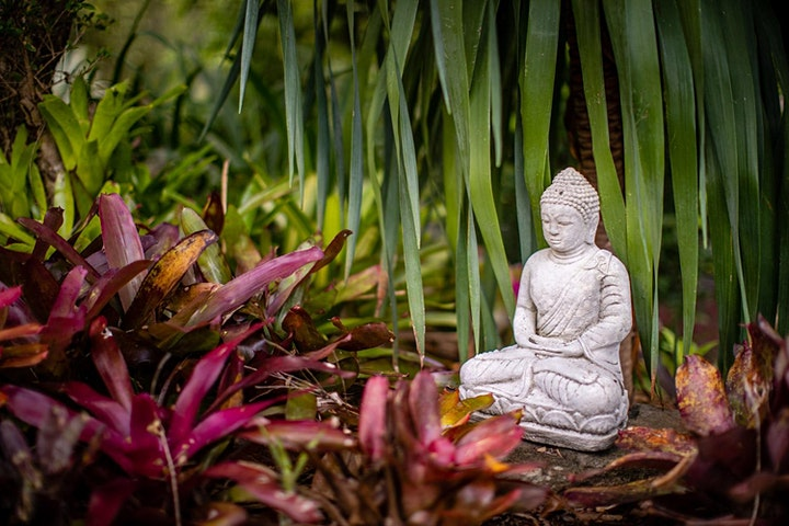 One Day Yoga Retreats - Workshop Series - Sunshine Coast image
