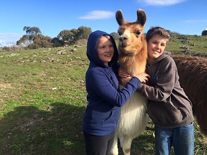 Family fun on the farm-November image