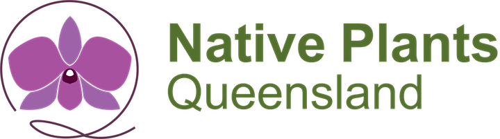 Native Plants QLD Quarterly Gathering image
