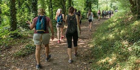 Randonnée : la Traversée de la Forêt de Montmorency billets