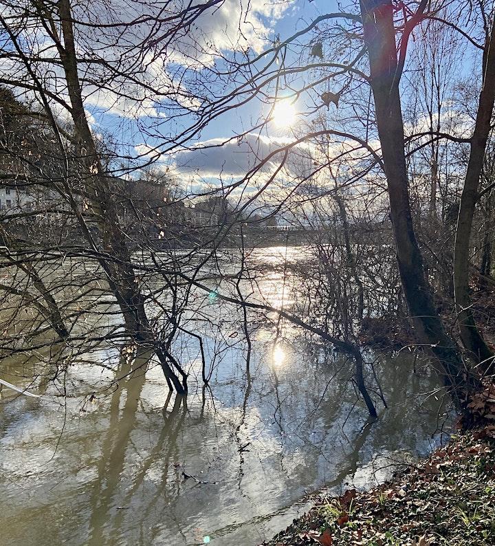 Image pour Bercés par la Saône