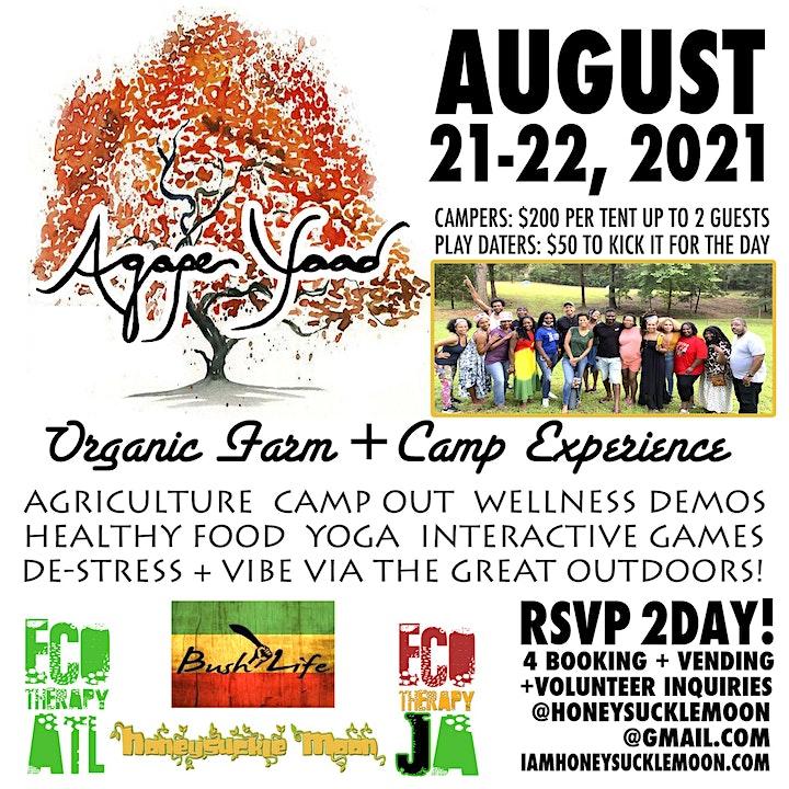 Agape Yaad Wellness + Camping Experience image