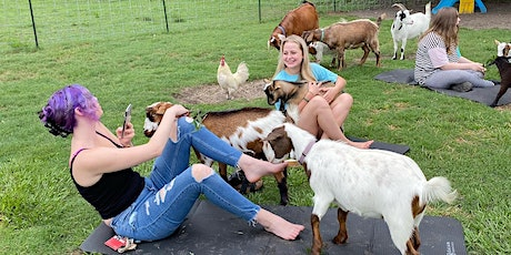 Petting on the Farm! tickets