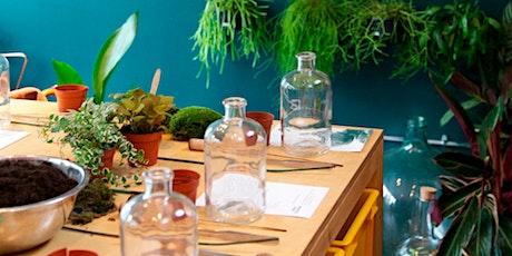 London Terrariums Tinyjohn Workshop tickets