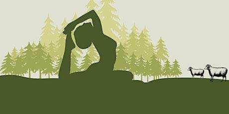 Sunset Yoga at Tivoli! tickets