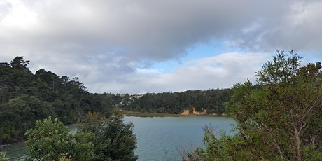 Kauri Point Domain Volunteer Introduction & FREE Guided Walk tickets