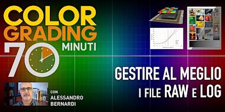 COLOR GRADING 70 MINUTI - GESTIRE AL MEGLIO I FILE RAW e LOG - 9.30-29/07 tickets