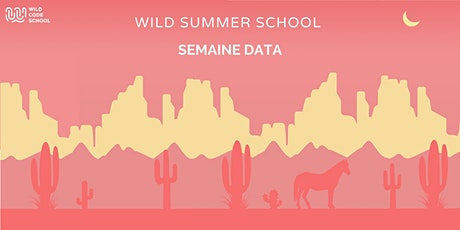Wild Summer School - Corrélations et statistiques avec un tableur billets