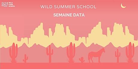 Wild Summer School - Tableau de bord interactif avec Data Studio billets