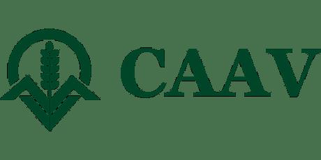 CAAV Hants Dorset & Wilts Tutorial 2021 tickets