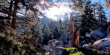HiKing-with-Friends: San Jacinto Peak tickets