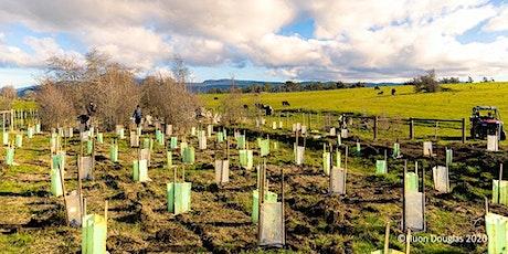 Tree Planting Weekend - NW Tas tickets