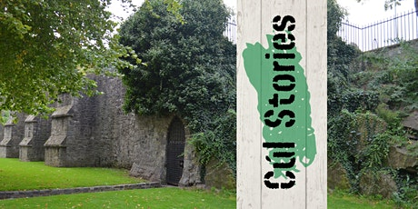 Old Dublin uncovered! tickets