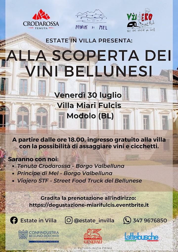 Immagine Alla scoperta dei vini bellunesi: Villa Miari Fulcis, Modolo (BL)