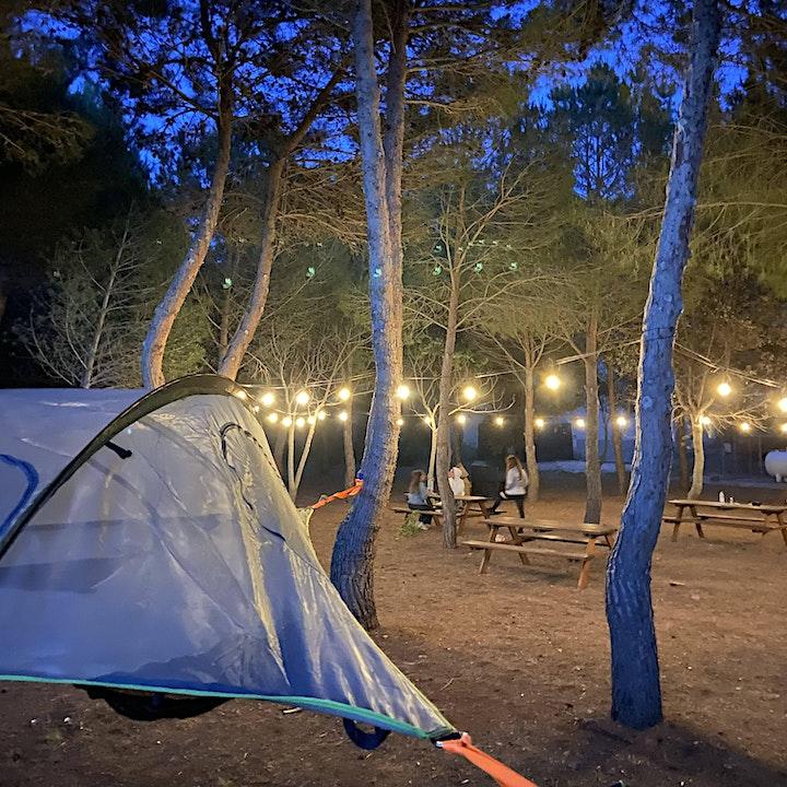 Immagine BRIO Unusual Camp | Tree tents e inclusione sociale