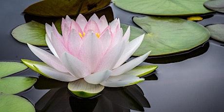 Deep Peace Meditation Class (Online) tickets
