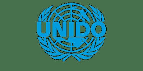 UNIDO Circular Economy Webinar biglietti