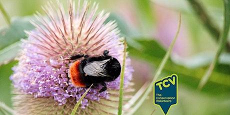 Pollinator BioBlitz Survey tickets