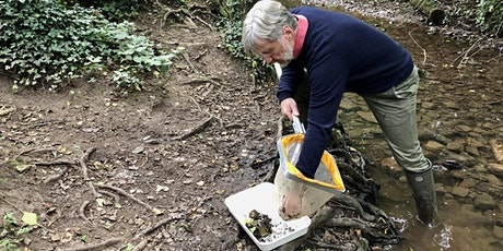 The state of British rivers: out of sight, out of mind? tickets