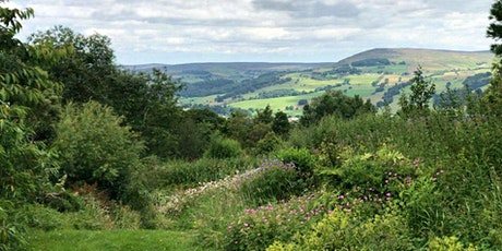 Systemic Constellations Retreat at Fell Edge tickets