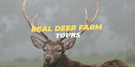 SPIRIT OF THE STAG - Deer Farm Tour tickets