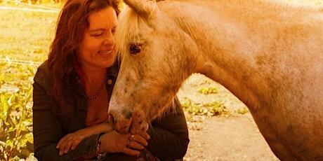 Je levensmissie en innerlijk kompas met hulp van paarden tickets