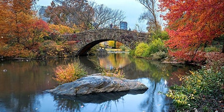 Singles Date Walking in Central Park  (In-Person) tickets