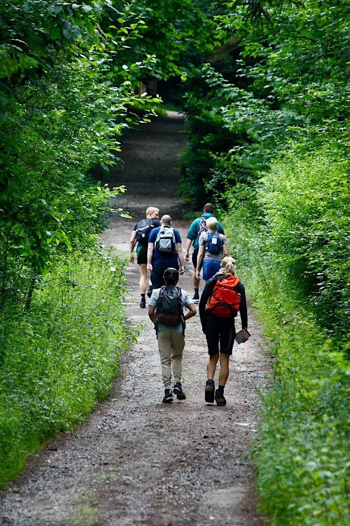 Sevenoaks, Knoll Park, and the Kent Downs Hike. image