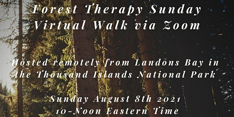 Virtual Nature & Forest Therapy Walk tickets