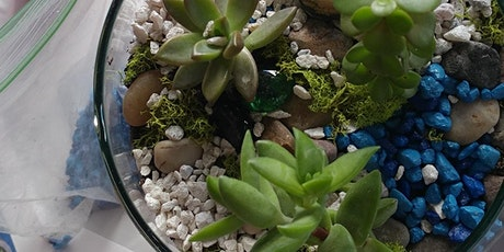 Succulent Terrarium Party at Device Brewing with Creatively Carrie! tickets