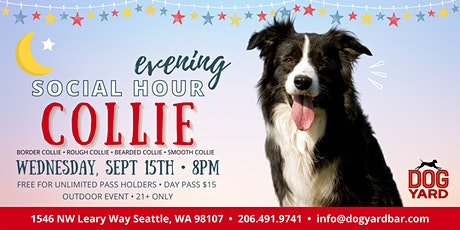 Seattle Collie Evening Meetup at the Dog Yard tickets