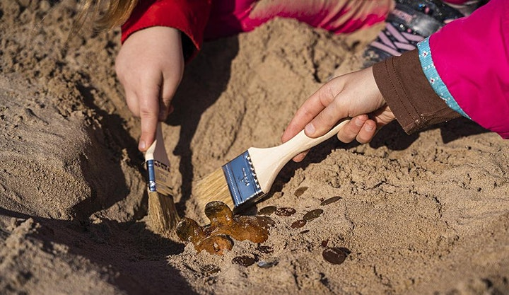 Science Trail - Archaeology at the Museum (6-10 years) image