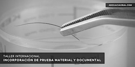 Taller Internacional de Incorporación de Prueba Material y Documental entradas